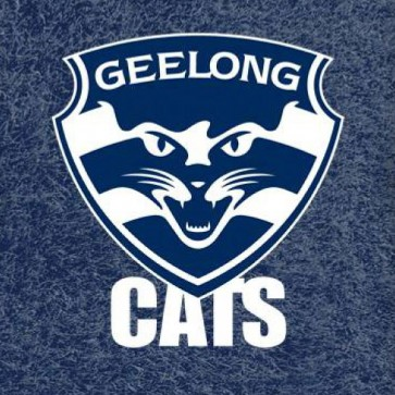 AFL Licensed Pool Snooker Billiards CLOTH 8 Foot - Geelong CATS