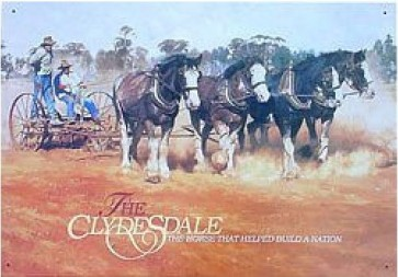 Australian Heritage Series Clydesdale Horses Tin Sign