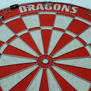 NRL Licensed DARTBOARD - St George Illawarra DRAGONS