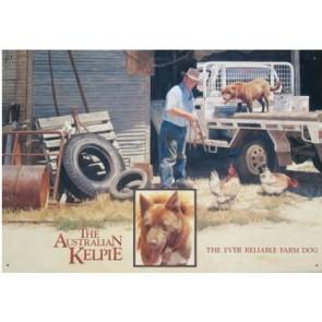 Australian Heritage Series Brown Kelpie Farm Dog Tin Sign