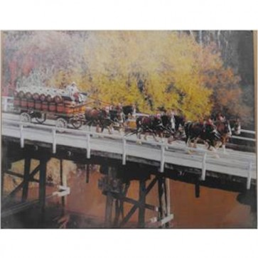 Australian Heritage Series Clydesdale Horses On Bridge Tin Sign