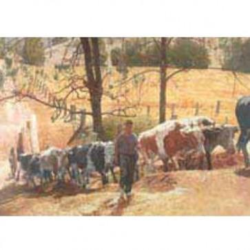 Australian Heritage Series Stockman Bullock Team Cattle Tin Sign